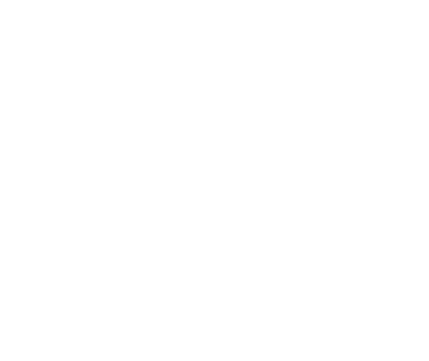 American Eagle Home Inspection